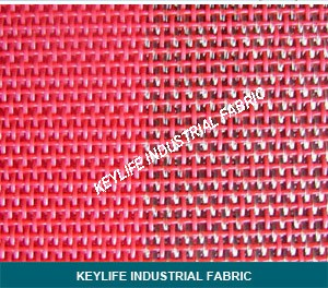 Paper Machine Clothing--Dryer Screen with PPS Edge