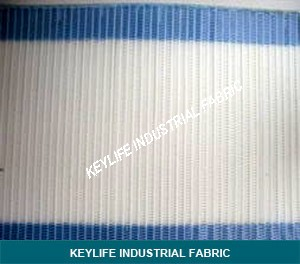 Paper Dryer Mesh for Drying Groups and Slalom