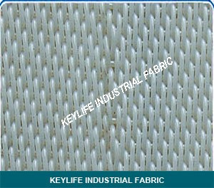 Polyester Fabric for Conveying