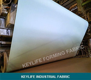 SSB Forming Paper Making Fabric